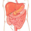 Применение автономного стимулятора желудочно-кишечного тракта в лечении и профилактике постгастрорезекционных моторно-эвакуаторных расстройств