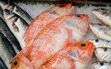 Правила выбора свежей рыбы