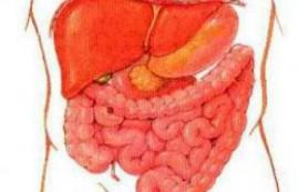 Составлена генетическая карта воспалительной болезни кишечника