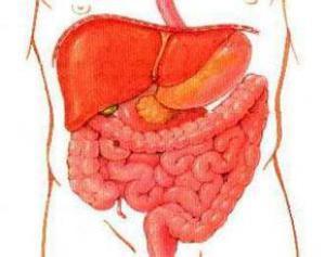 Микробы провоцируют рак кишечника
