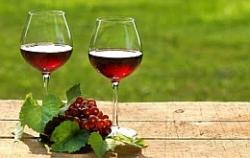 Одним бокалом красного вина можно защититься от рака кишечника