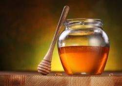 Польза меда при различных заболеваниях