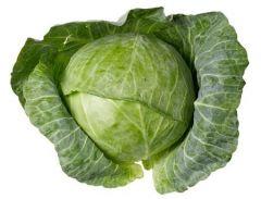 Капуста – королева овощей и залог здоровья