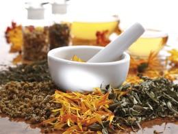 Зеленая аптечка: травы и настои для устранения проблем с пищеварением
