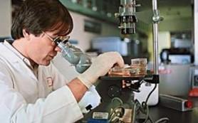 Российскими учеными сделано революционное открытие в области кишечного иммунитета
