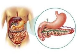 Рак поджелудочной железы: Лечение и профилактика