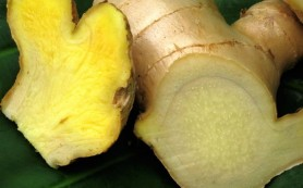 Как с тошнотой поможет справиться корень имбиря