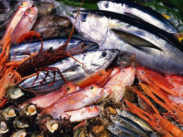 Почему нужно регулярно включать в свой рацион морепродукты