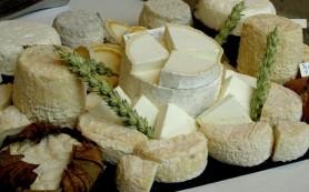 Козий сыр полезен для здоровья