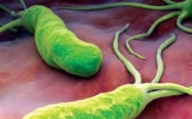 Компонент растительных масел помог уничтожить микробы в желудке