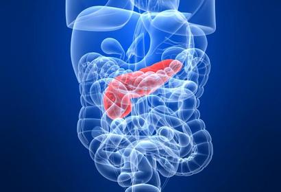 Диета при панкреатите у взрослых и детей