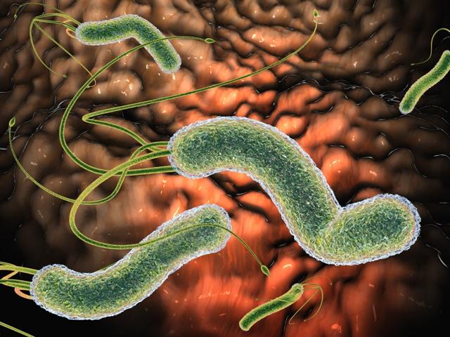 У детей с энтезит-ассоциированным артритом обнаружили изменения микробиома кишечника