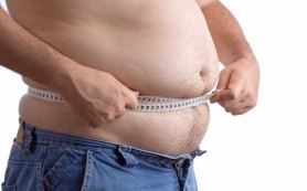 Учеными обнаружен белок, регулирующий накопление жира в организме