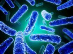 Дисбактериоз: как выявить и вылечить?
