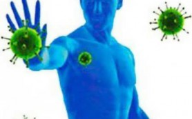Правда и мифы об иммунной системе