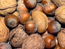 Орехи снижают риск рака толстой и прямой кишки