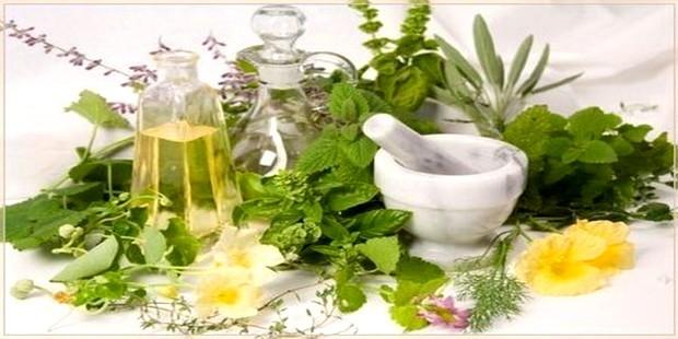 Чем вредны лекарственные травы?
