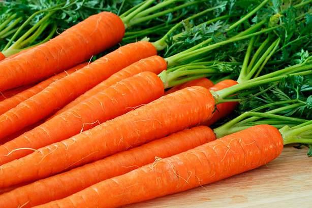 Молодая морковь: целебные свойства и польза для здоровья
