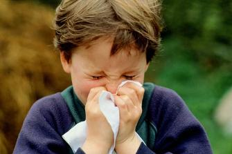 Как вылечить грипп в домашних условиях?
