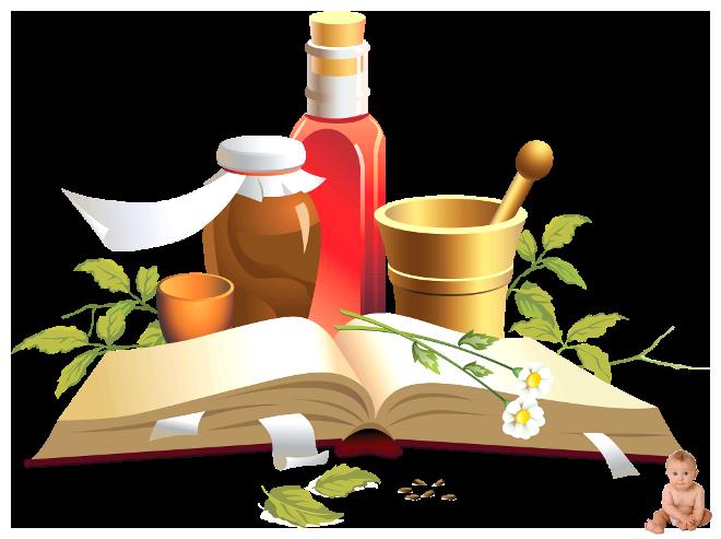 Лекарства с грядки: рецепты народной медицины