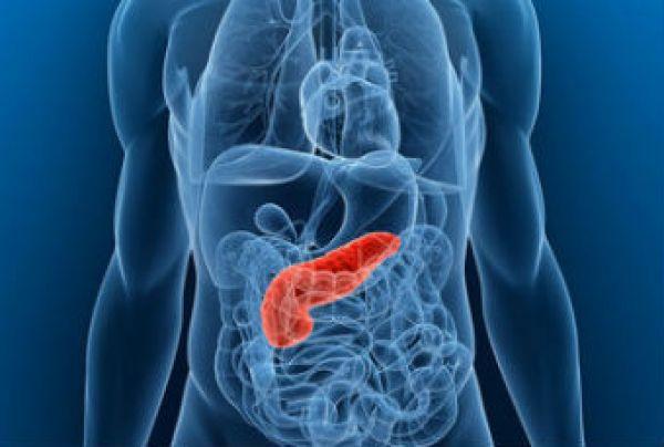 Диета при панкреатите у взрослых