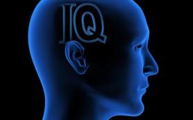 Как сон влияет на IQ?
