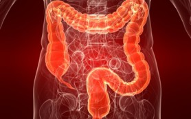 Виноградные косточки полезны при раке кишечника