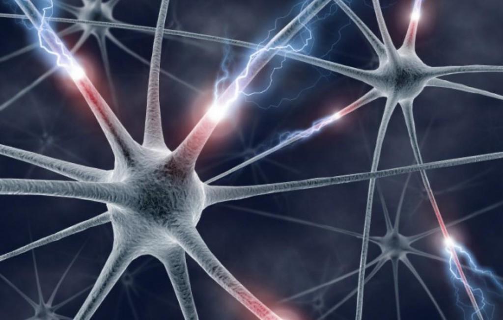 Здоровый кишечник убережет от неврологических расстройств