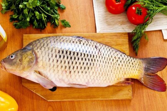Употребление рыбы и описторхоз