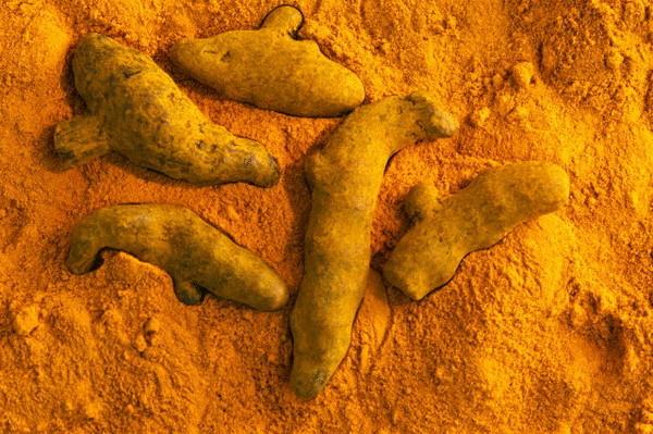 Противоокислительные специи уменьшают отрицательные эффекты жирной пищи