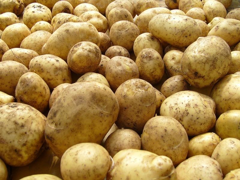 Картофель лечит язву желудка