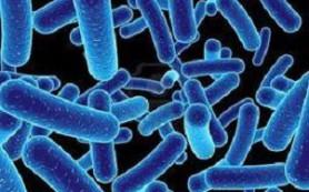 Лечение дисбактериоза у маленьких детей