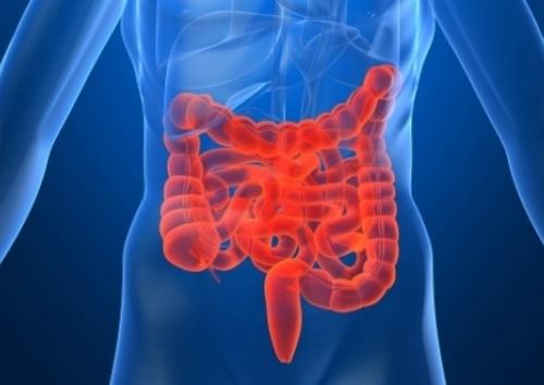 Посменный график работы – причина развития синдрома раздраженного кишечника