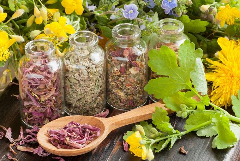 Народная медицина против аллергии.