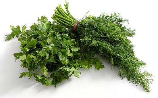 Сладкое открытие: сахар в зелени поддерживает здоровье кишечника