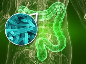 Лучшие рецепты для восстановления микрофлоры кишечника