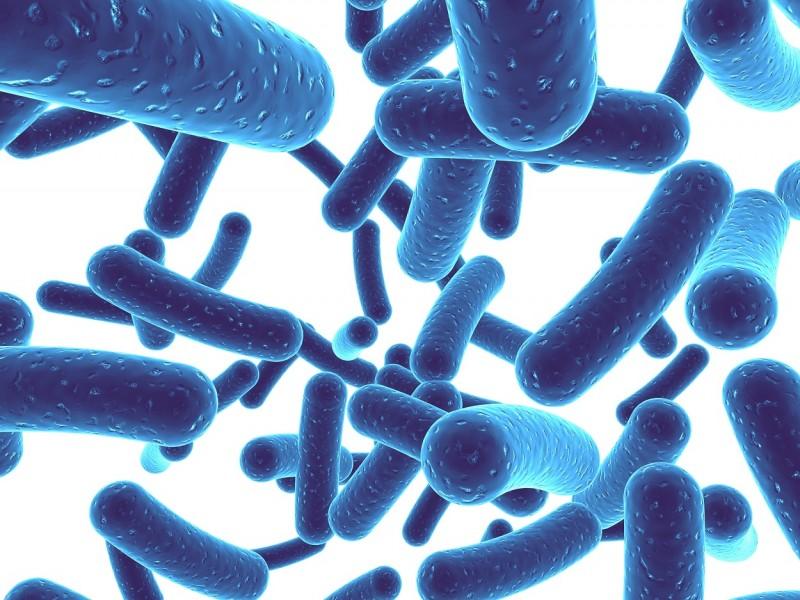 Ученые: лечение пробиотиками не имеет смысла