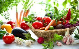 Вегетарианская диета: советы
