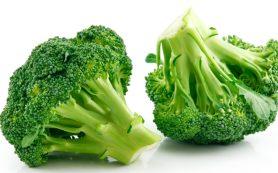 Капуста брокколи: полезные свойства, применение для похудения, противопоказания