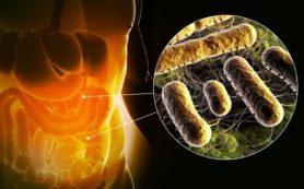 Правильные продукты помогут сохранить здоровую микрофлору