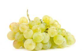 Укрепляем организм виноградом