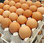 Специалисты придумали, как снизить риск пищевых отравлений