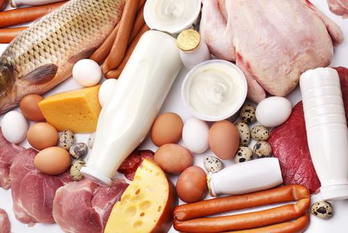 Белковая диета: плюсы и минусы