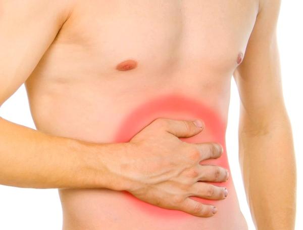 Микрофлора кишечника: значение, состав, причины нарушений