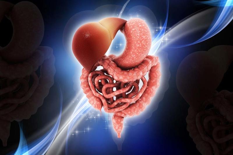 Неправильно подобранный лифчик вреден даже для желудка и кишечника