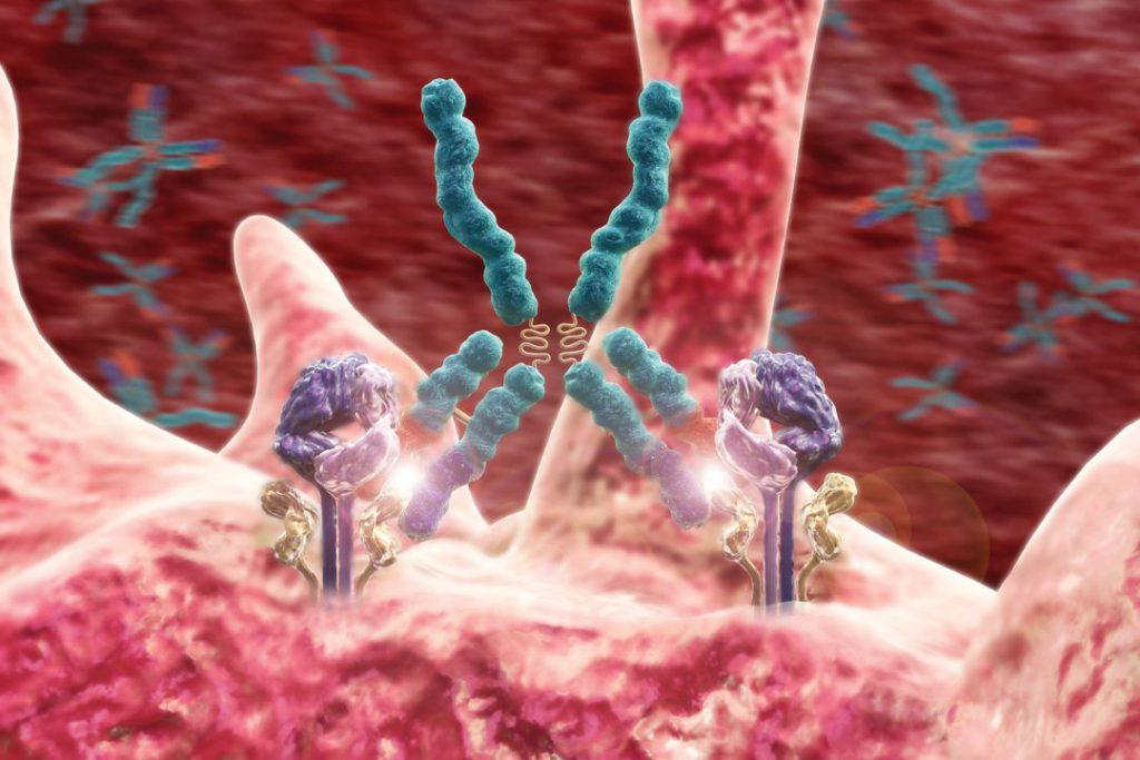 Риск развития аутоиммунных заболеваний зависит от состояния желудка