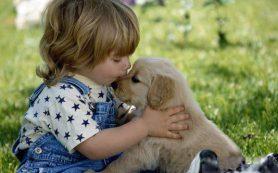 Паразитарные заболевания (гельминтозы) у детей
