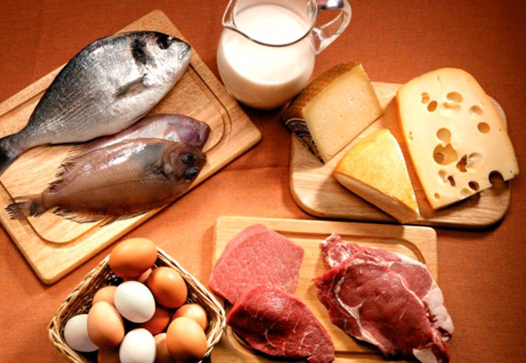 Белковая диета повышает риск возникновения рака кишечника