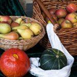 Специалисты предложили есть в два раза больше овощей и фруктов