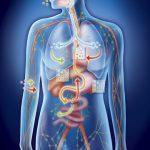 Как очистить организм от токсинов и потерять 5 кг за месяц